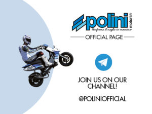 Polini Telegram channel