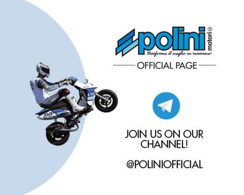 canale Polini Telegram - Polini Telegram channel - chaîne Polini Telegram - canal Polini Telegram